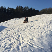 Winterwonderland Obermichelbach